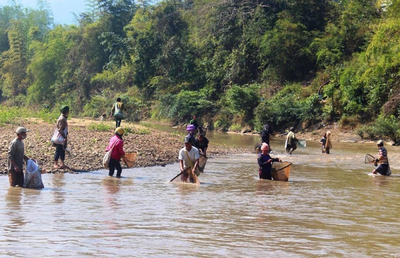 Điện Biên: Vỡ bể nước thải, người dân lo lắng, cá chết trắng suối