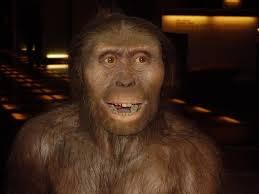 Loài vượn thời hiện đại có thể thông minh hơn tổ tiên tiến hóa của chúng ta.