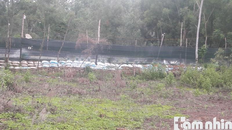Tĩnh Gia, Thanh Hóa: Ngang nhiên lấn chiếm đất rừng phòng hộ để làm hồ nuôi tôm trên cát