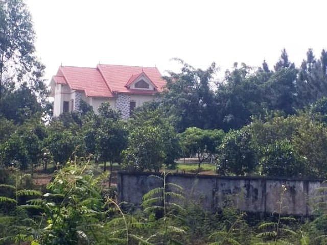 Cần truy cứu trách nhiệm Chủ tịch UBND huyện Lập Thạch