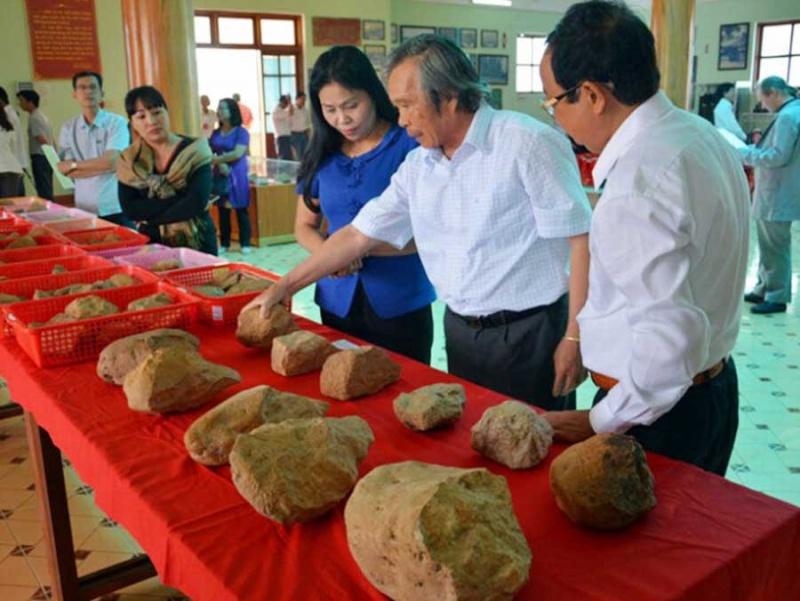 Gia Lai: Chuẩn bị cho Hội thảo quốc tế về khảo cổ học