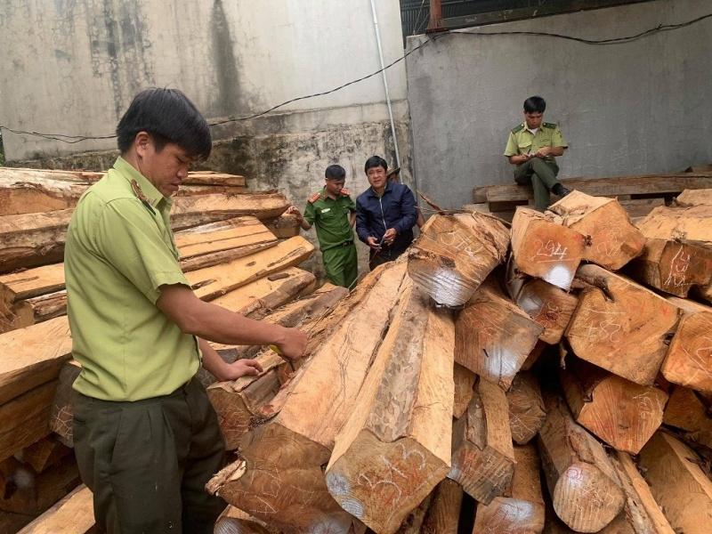 Gia Lai: Bắt giam chủ doanh nghiệp tàng trữ trái phép 200 m3 gỗ