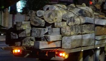 Gia Lai: Phát hiện xe chở gỗ không rõ nguồn gốc