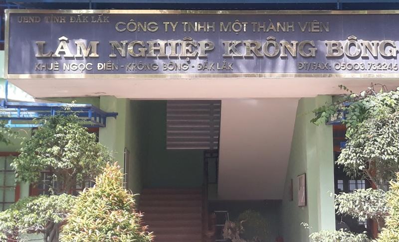 Đắk Lắk: Phát hiện 48 cây gỗ Pơ Mu bị đốn hạ thuộc Công ty Lâm nghiệp Krông Bông quản lý