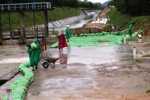 Tắm mương thủy lợi, 3 cháu nhỏ ở Bình Định chết đuối thương tâm