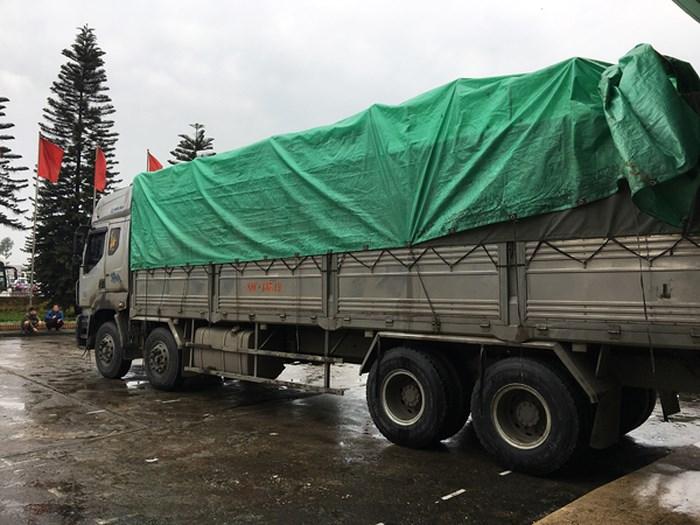 Hà Nội bắt giữ hơn 12 tấn hàng nhái các nhãn hiệu nổi tiếng