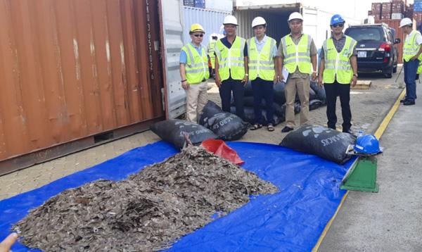 Gần 5,3 tấn vảy tê tê giấu trong container hạt điều nhập khẩu