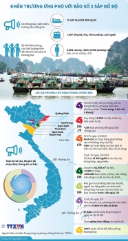 infographics khan truong ung pho voi bao so 3 sap do bo