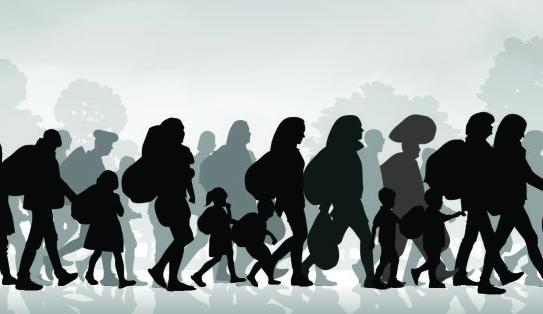 Xúc tiến việc hoàn thiện chính sách, pháp luật về di cư quốc tế