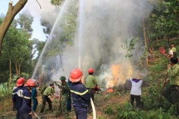 Đề xuất quy định về phòng cháy, chữa cháy rừng