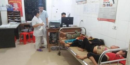 Nghệ An: Bị ong đốt khi đi thu hoạch lúa, 7 người nhập viện cấp cứu