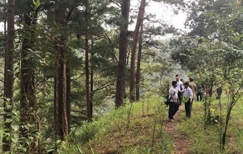 Du khách Hàn Quốc tử vong khi tham gia thử thách nhảy thác mạo hiểm ở Đà Lạt