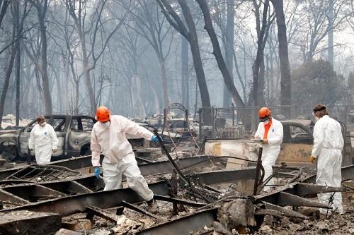Thảm họa cháy rừng ở California, Mỹ: Triển khai hệ thống phân tích ADN cấp tốc để hỗ trợ tìm kiếm và nhận dạng nạn nhân