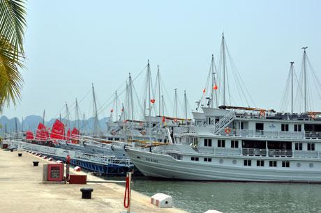 Phát triển cảng thủy nội địa phục vụ du lịch