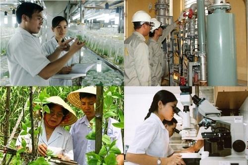 Ban Chỉ đạo liên ngành hội nhập quốc tế về văn hóa, xã hội, khoa học, công nghệ và giáo dục, đào tạo