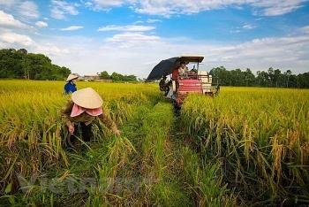 dau an cua tang truong nganh nong nghiep trong nam 2018