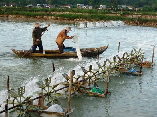 Quỹ bảo vệ và phát triển nguồn lợi thủy sản
