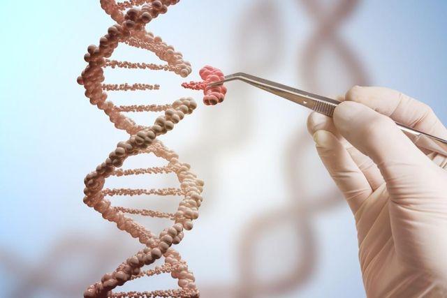 WHO kêu gọi quản lý chặt chẽ về chỉnh sửa gene người