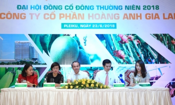 co dong cong ty hoang anh gia lai bay to noi that vong khi gia co phieu hag lien tuc giam khong phanh