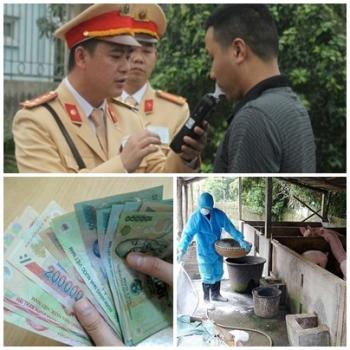chi dao dieu hanh cua chinh phu thu tuong chinh phu noi bat thang 52019