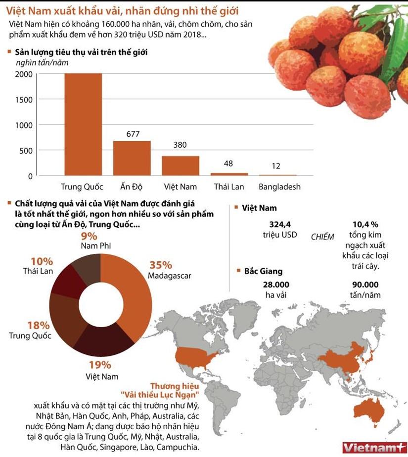 [Infographics] Việt Nam đứng thứ hai thế giới về xuất khẩu vải, nhãn