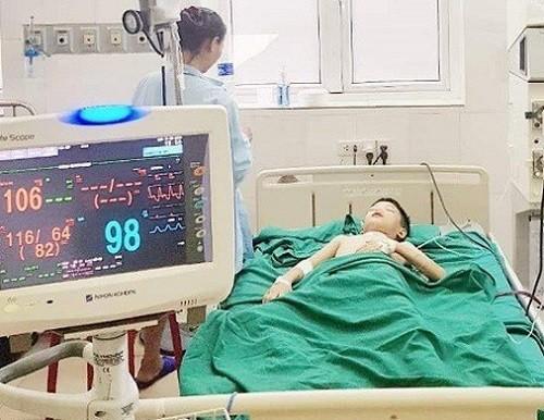 Nghệ An: Bé trai 11 tuổi bị ong vò vẽ đốt hơn 100 nốt, nhập viện trong tình trạng nguy kịch