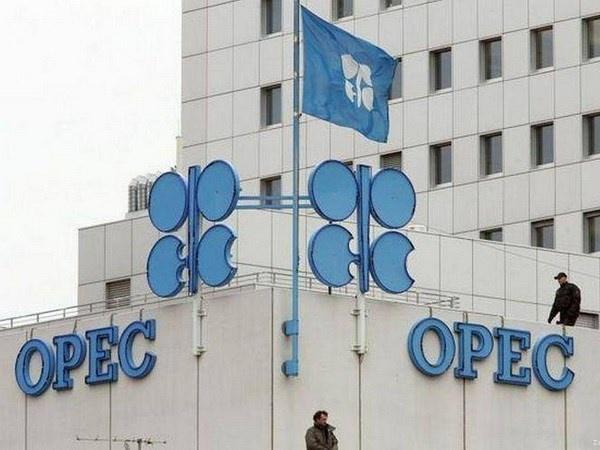 OPEC bù đắp lượng dầu thiếu hụt sau khi Mỹ tái cấm vận Iran