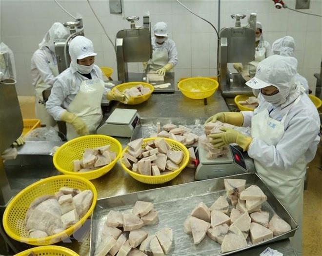 Khắc phục 'thẻ vàng' IUU: Cơ hội hình thành nghề cá có trách nhiệm
