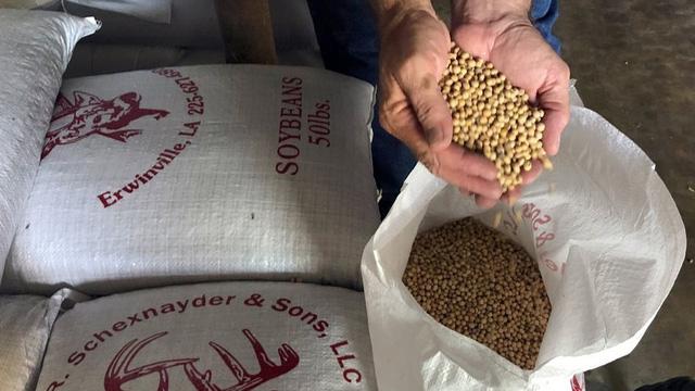 Chính quyền Mỹ thông qua khoản trợ cấp thứ 2 trong chương trình dành cho nông dân bị ảnh hưởng bởi chiến tranh thương mại
