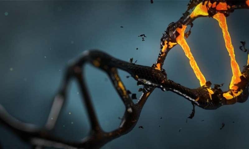 Tái tạo thành công gene của người đã chết 200 năm