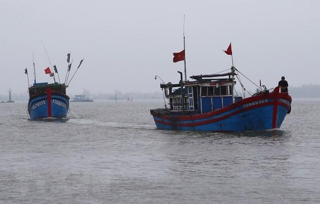Xác minh thông tin tàu cá bị chìm trên vùng biển Bà Rịa-Vũng Tàu