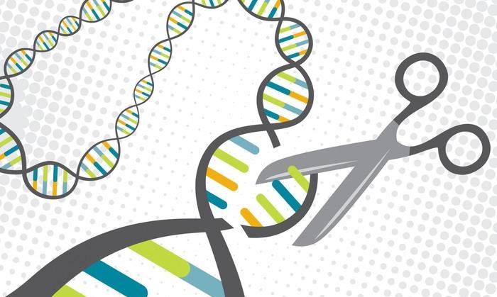 Trung Quốc đã sửa gen cho 86 người bệnh