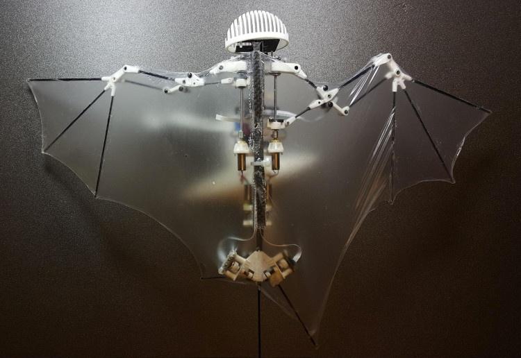 Chế tạo drone lấy cảm hứng từ dơi, có thể tự bay và tự ghi hình