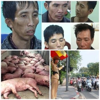 chi dao dieu hanh cua chinh phu thu tuong chinh phu noi bat tuan tu 18 2222019