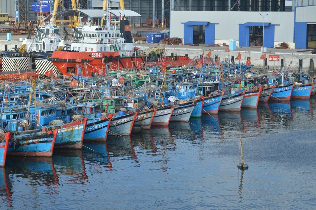 Đà Nẵng xử lý nghiêm tàu cá vi phạm quy định khai thác IUU