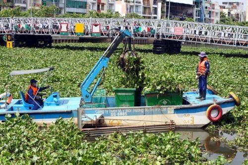 TPHCM thực hiện nhiều biện pháp phòng ngừa tình trạng cá chết trên kênh Nhiêu Lộc – Thị Nghè