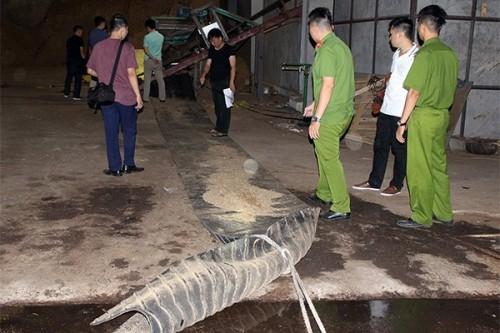 Quảng Ninh: Phát hiện thi thể nam công nhân bị cuốn vào băng tải