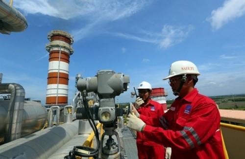 8 thành viên trong HĐQT, Ban Kiểm soát của Tổng công ty Điện lực Dầu khí Việt Nam sắp nhận lương 'khủng'