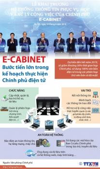 e cabinet buoc tien lon trong ke hoach thuc hien chinh phu dien tu