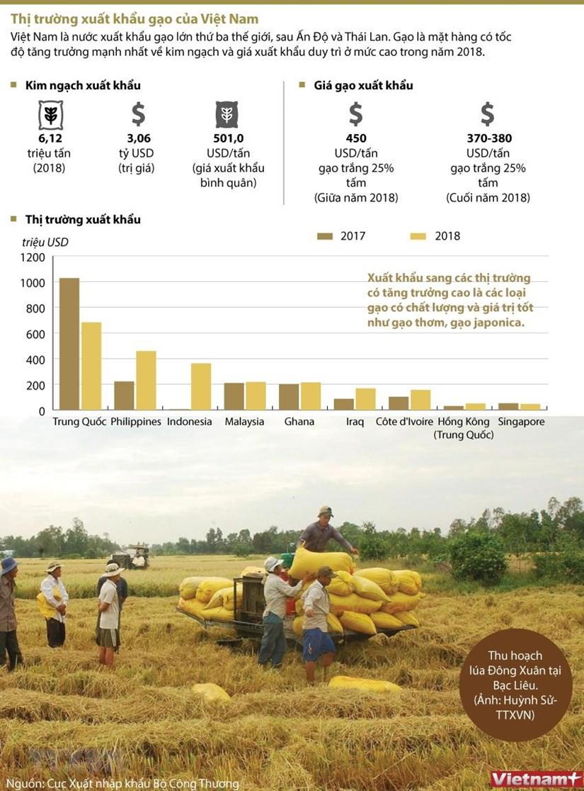 infographics thi truong xuat khau gao cua viet nam