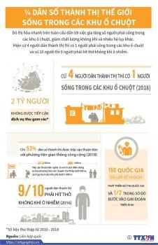 infographics 14 dan so thanh thi the gioi song trong khu o chuot