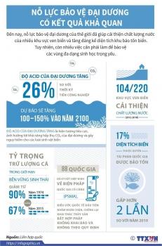 infographics no luc bao ve dai duong co ket qua kha quan