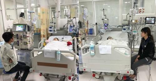 5 người trong gia đình bị ong vò vẽ tấn công: 2 người chết, 3 người nhập viện cấp cứu