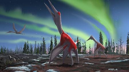 Phát hiện hóa thạch thằn lằn bay lớn nhất mọi thời đại