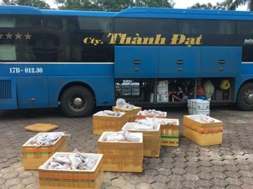 Hà Tĩnh: Bắt giữ 1 xe khách vận chuyển gần 1 tấn thịt mèo đông lạnh không rõ nguồn gốc xuất xứ