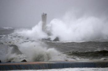 Tàu hàng Panama chìm ở vịnh Tokyo khi siêu bão đổ bộ, chưa rõ số phận 2 thủy thủ Việt