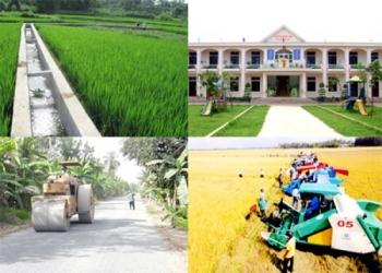 Thêm 4 huyện đạt chuẩn nông thôn mới