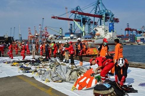 Indonesia sẽ công khai kết luận về vụ tai nạn máy bay Lion Air làm 189 người chết vào cuối tháng 11/2018