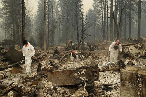 Thảm họa cháy rừng ở California, Mỹ: Phát hiện 48 thi thể, con số tử vong sẽ còn tăng lên
