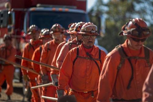 Thảm họa cháy rừng ở Mỹ: Điều động tù nhân đến dập lửa